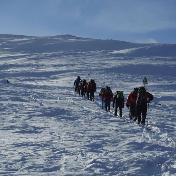 Winter walking course